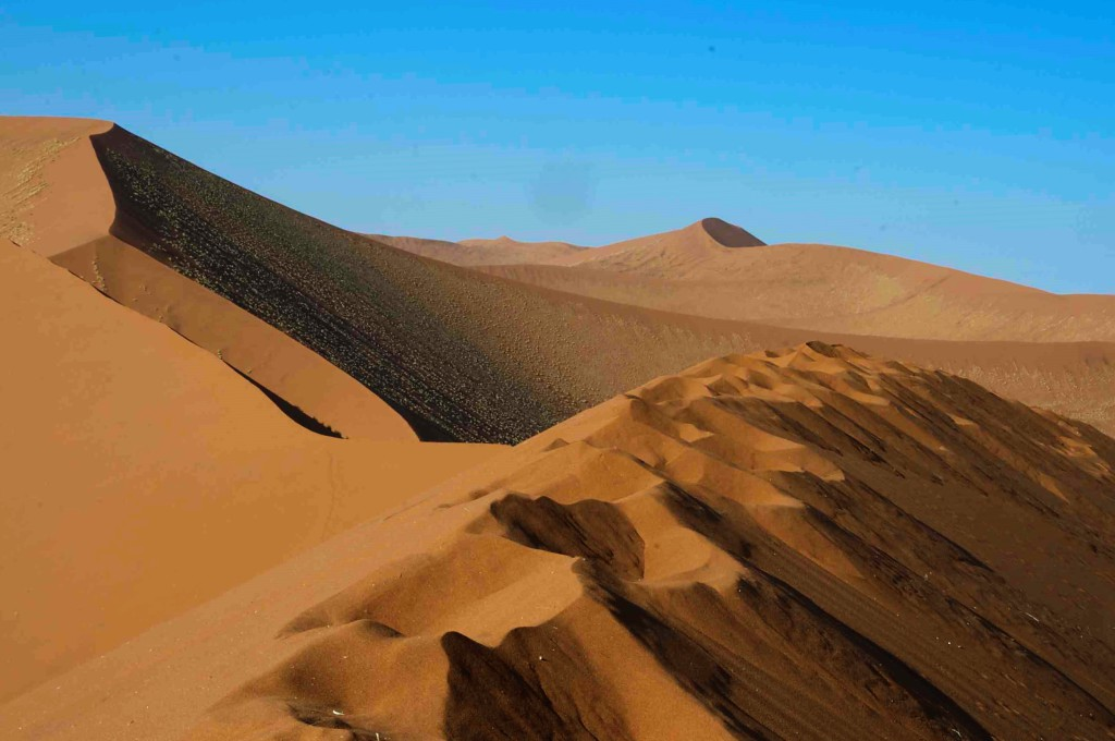 Classic Namibia: Super Namibia con geologo