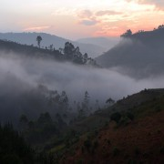 Trekking Uganda