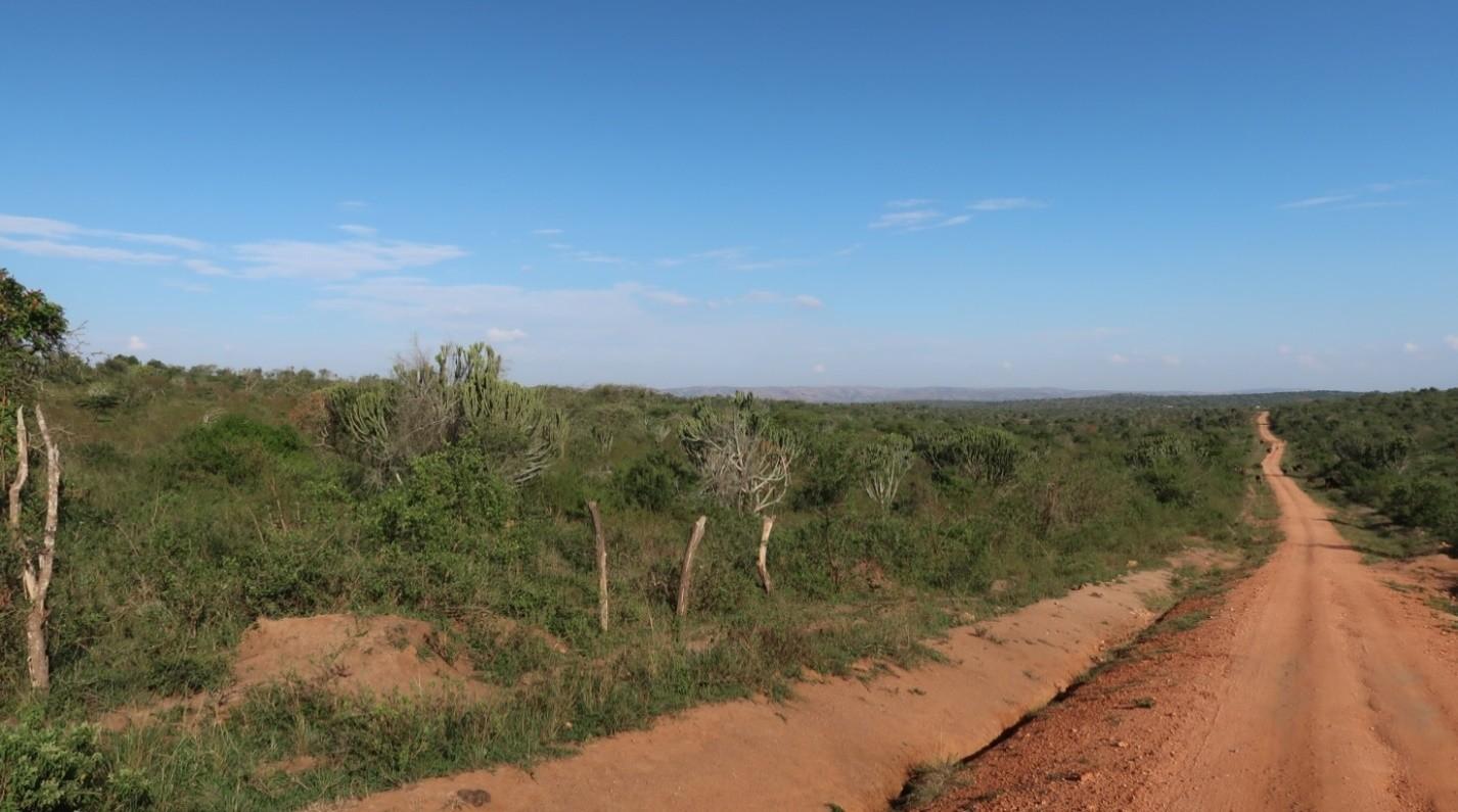 strada uganda