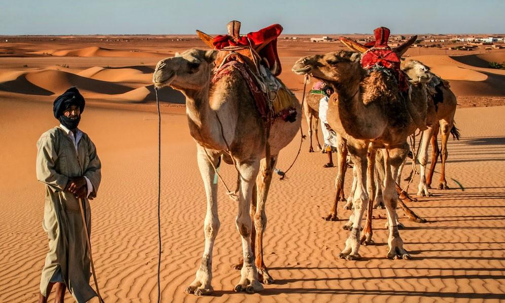 Mauritania Mon Amour