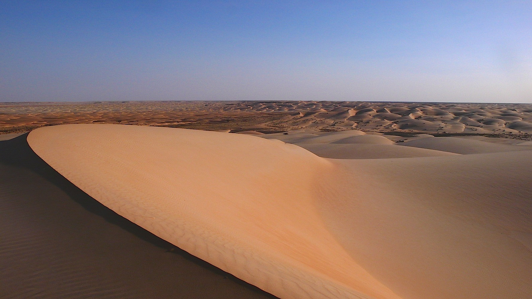 Desert Camp