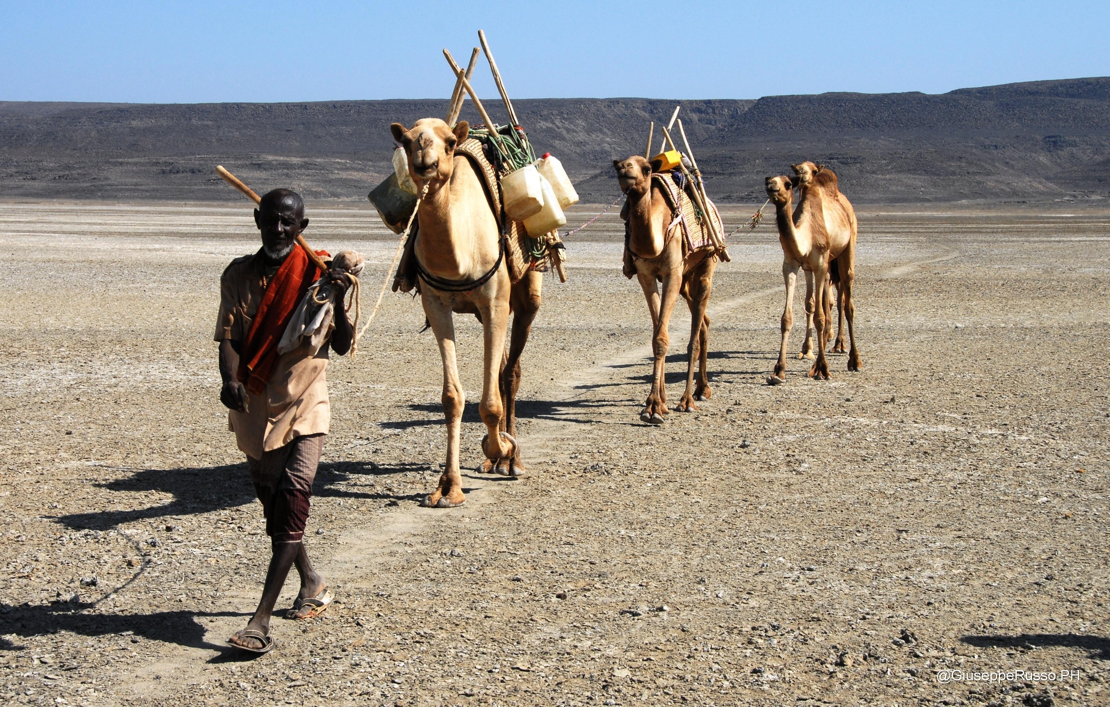 Gibuti, Harar e Somaliland