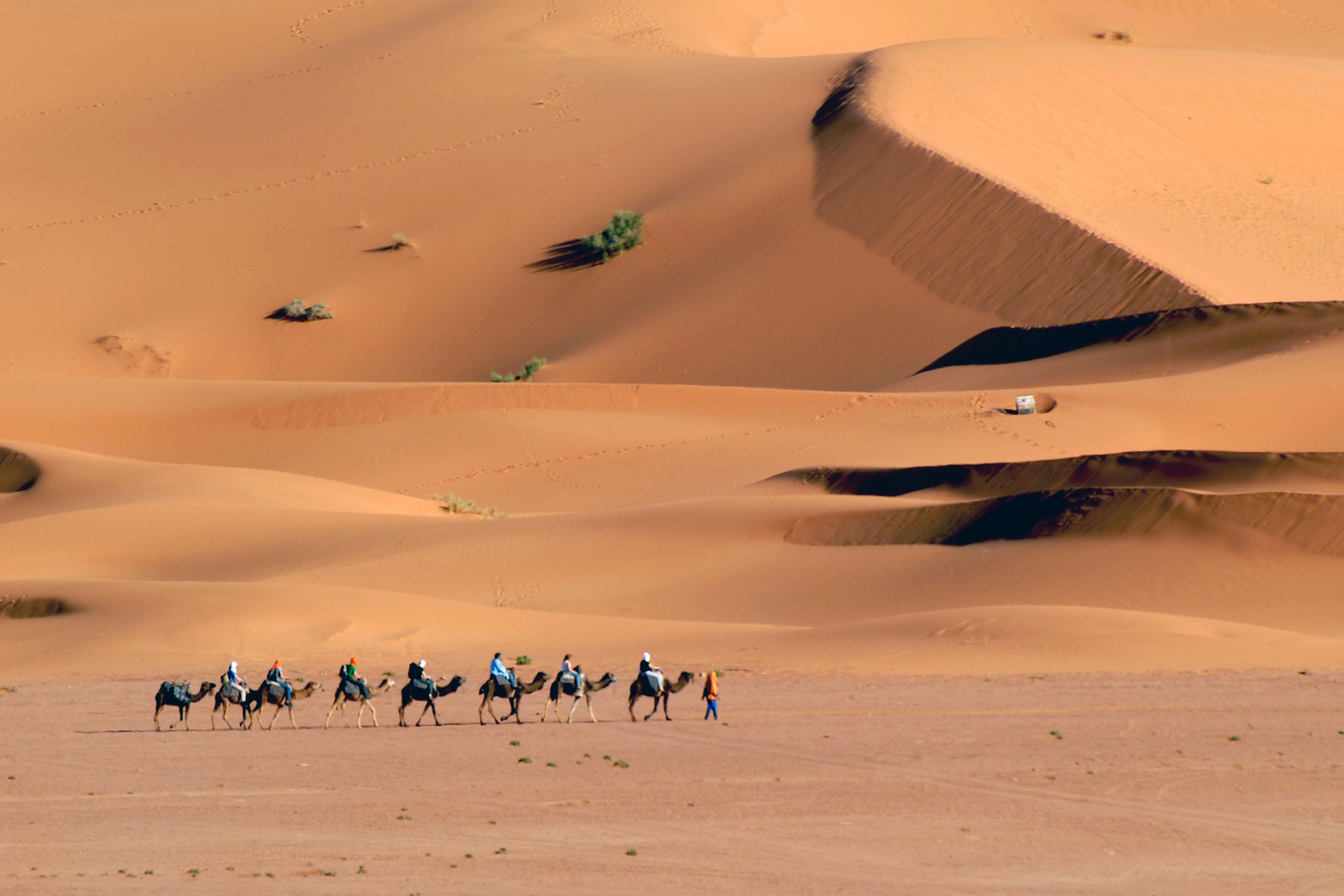 15. attraversamento del deserto