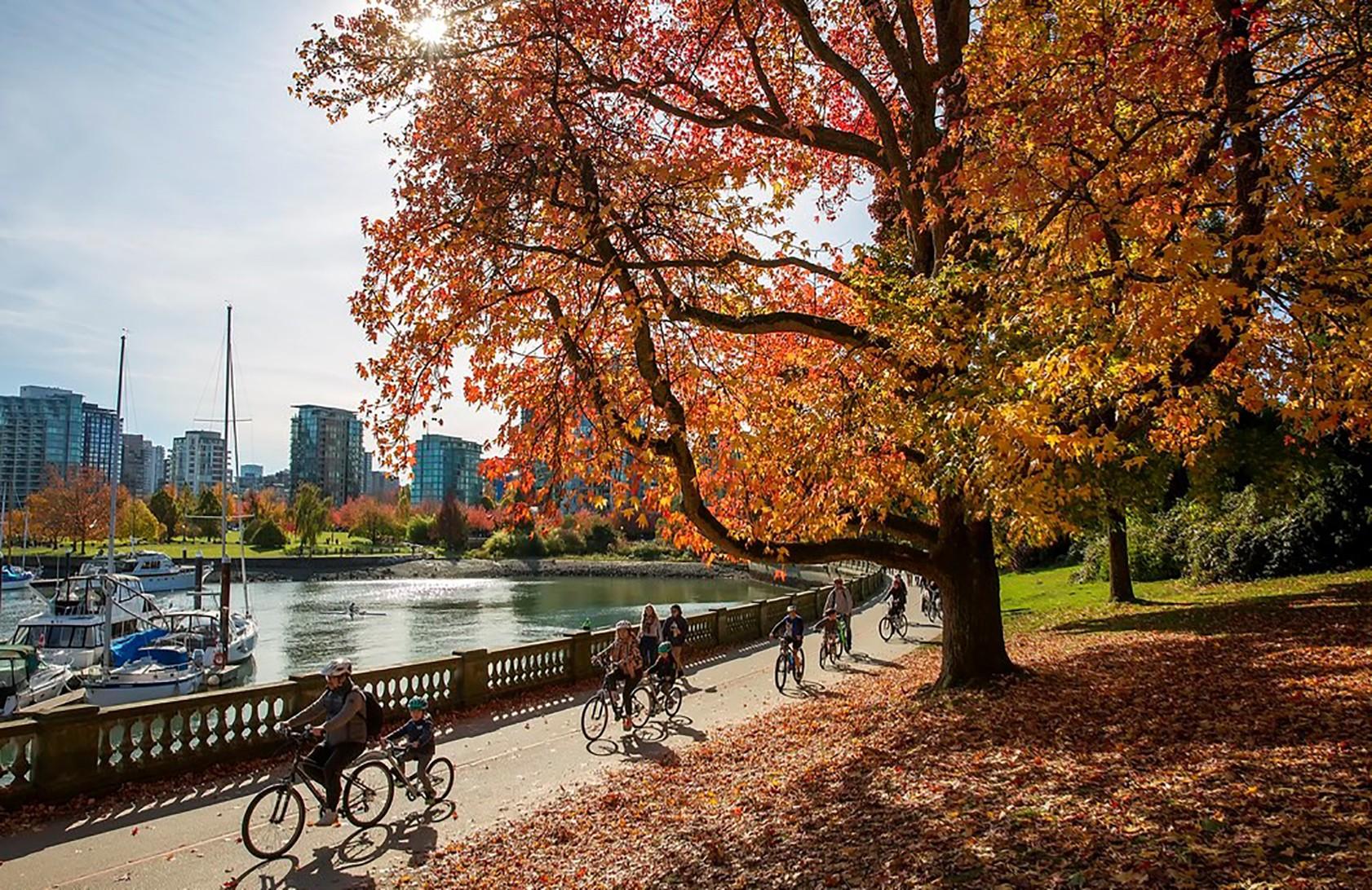 9 Vancouver Stanley Park foliage ok