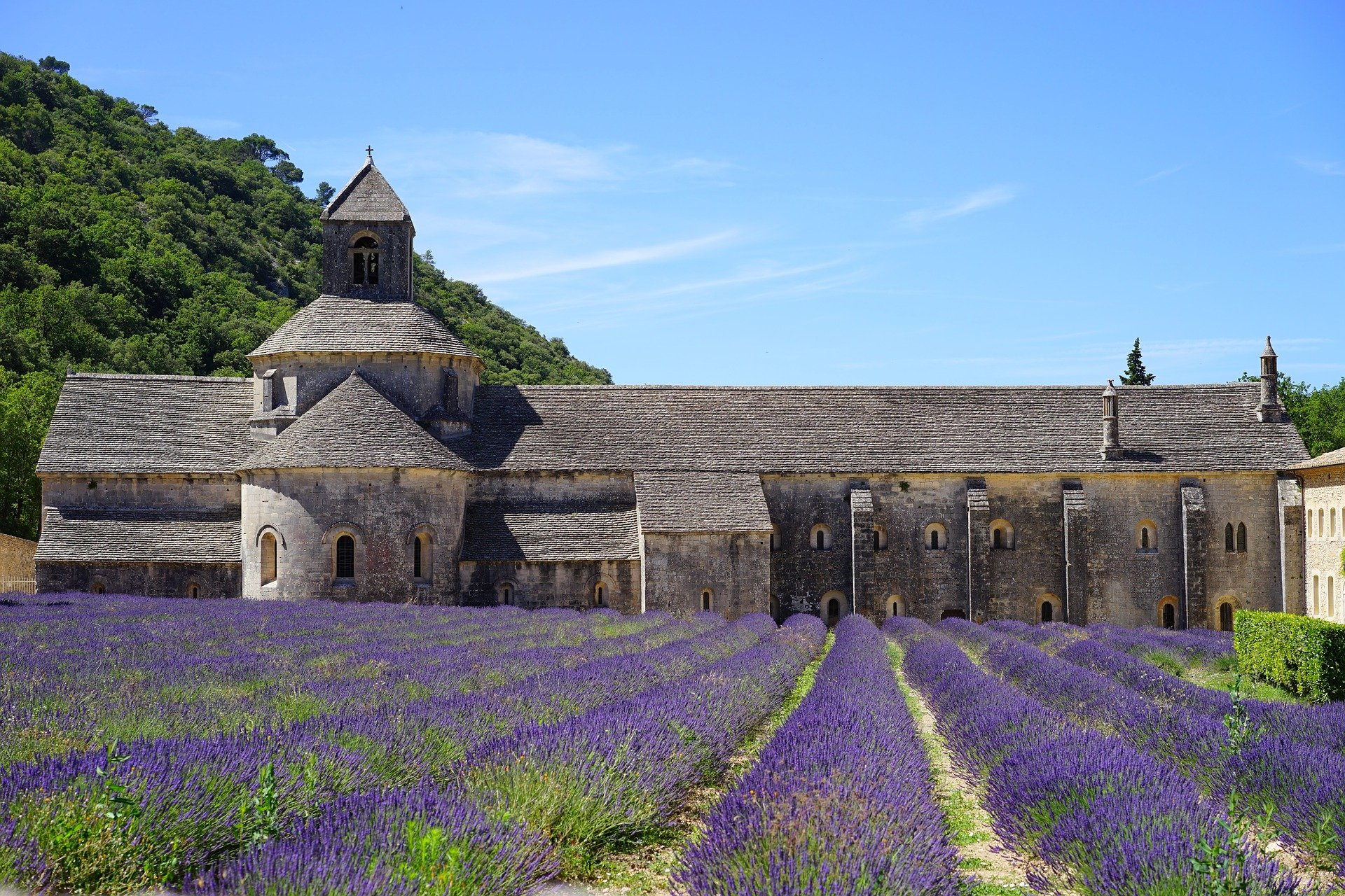 abbaye-de-senanque-1595649_1920 (1)